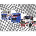 Camions de course